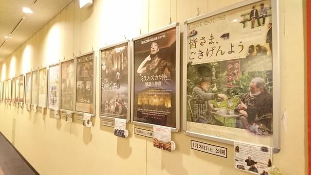 シネリーブル神戸DSC_0979.JPG